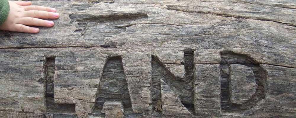 land-carve